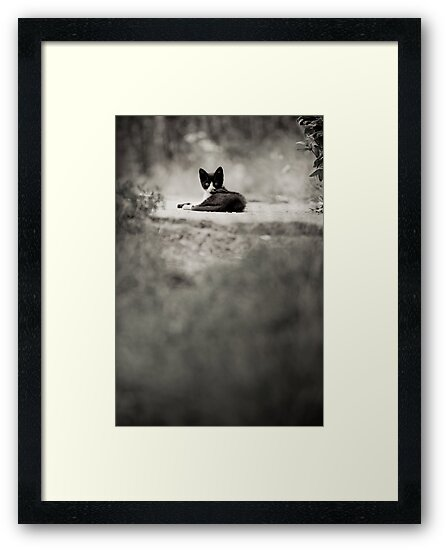 OnePhotoPerDay Series: 203 by L. by C. & L. | ABBILDUNG.ro Photography