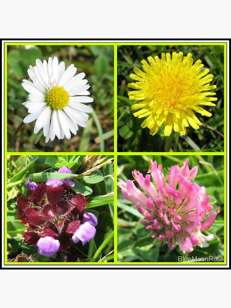 Wildflowers Collage von BlueMoonRose