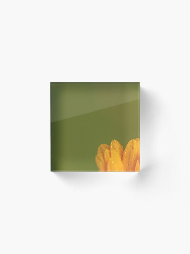Alternate view of Wet Yellow Petals against Green background Acrylic Block