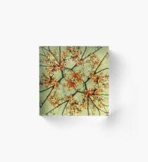 Bloque acrílico Floral Motif Print Pattern Collage