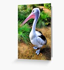 Pelican Perfection Greeting Card