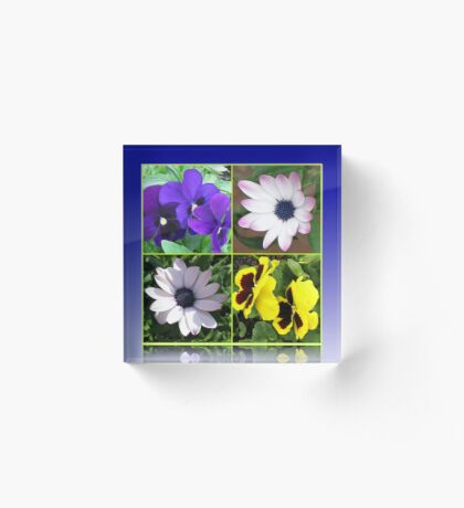 Pretty Pansies and Cute Cape Daisies Floral Collage Acrylblock