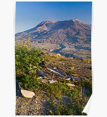 Returning Life (Mount St. Helens) Poster