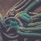 Lots of rope knots leading to moored boats. Iron mooring rings. by Alexander Nedviga