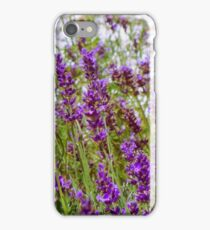 Lavender Fields iPhone Case/Skin