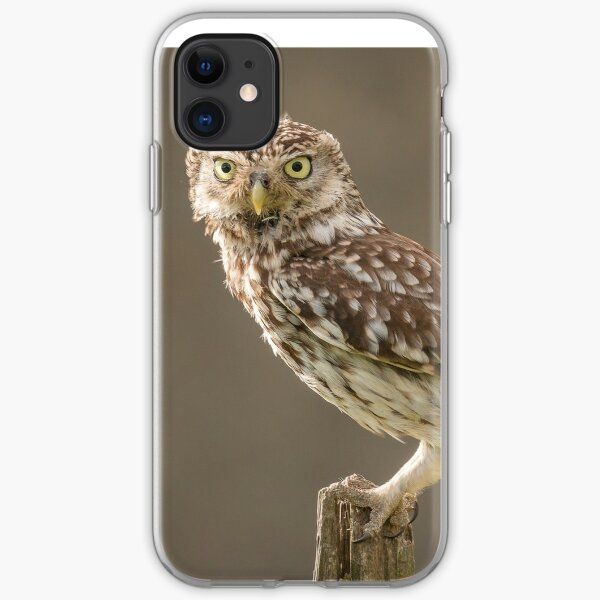 Owl on a post staring at you iPhone Soft Case