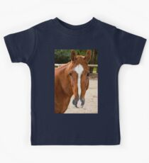0221 Horse Kids Clothes