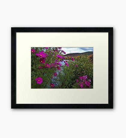 Garden on the Bridge of Flowers Framed Print