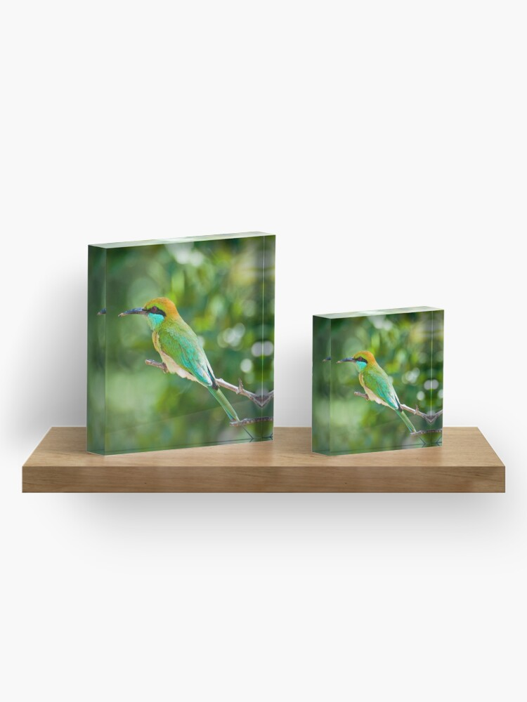 Alternate view of Green Bee-eater Acrylic Block