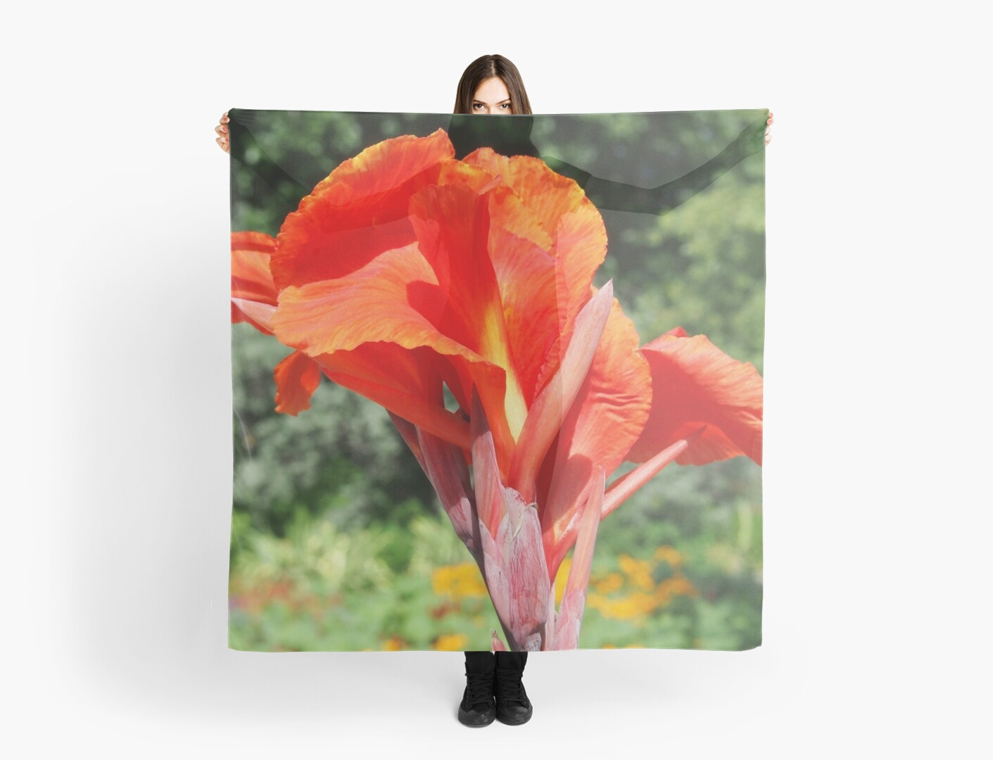 Red Canna Lilly Flower in Summer Garden by Amy McDaniel