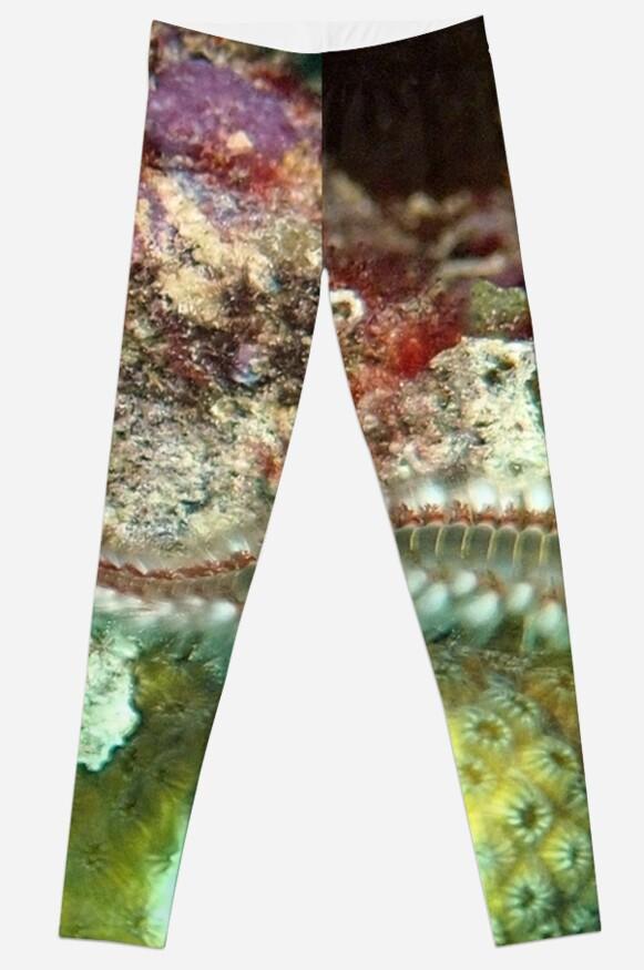 Coral Reef Bearded Fireworm - Caribbean Undersea Life by Amy McDaniel