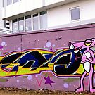 Pink Panther by heinrich