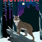 Romania Travel Poster by finchfish