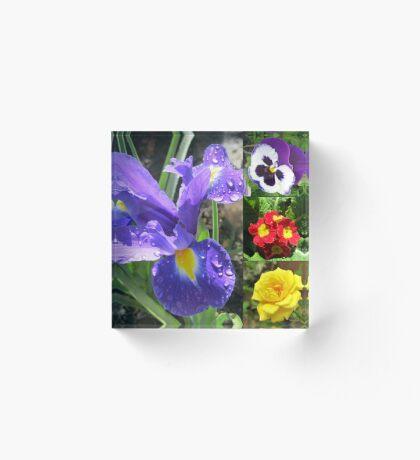 Iris Collage Acrylblock