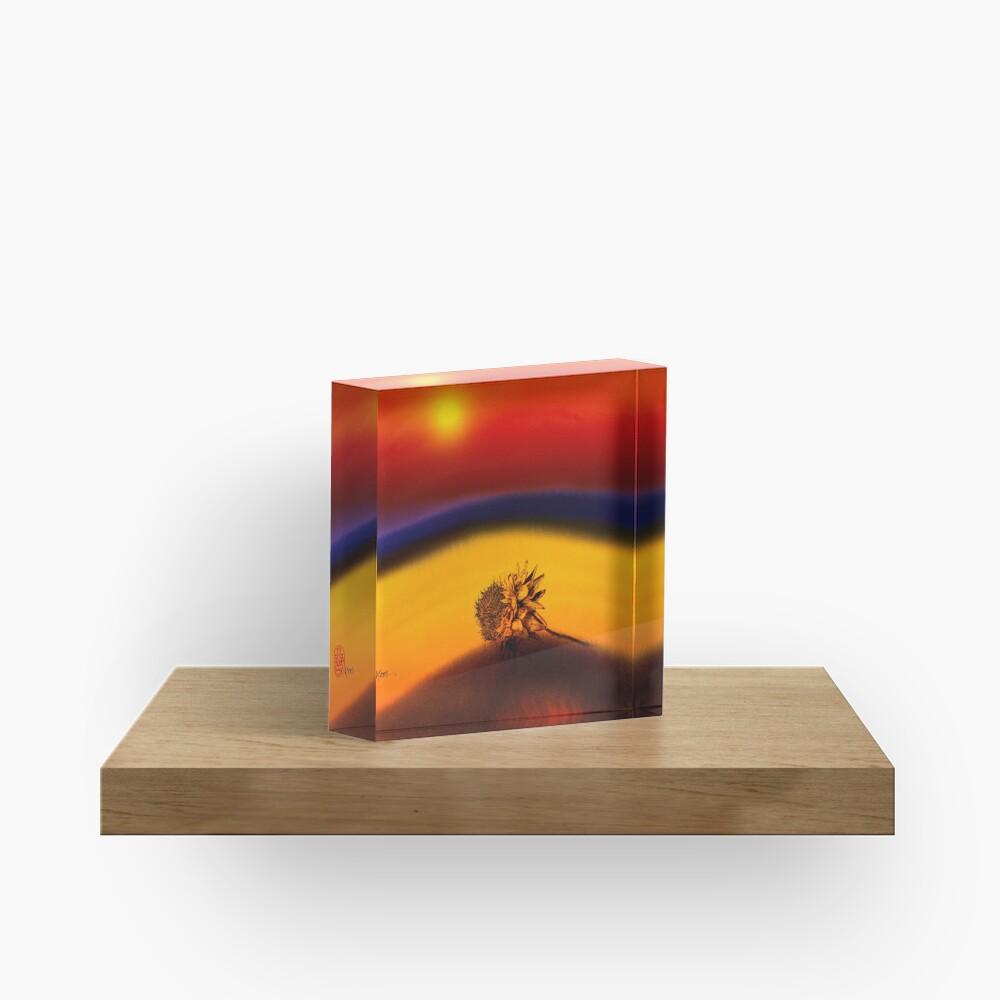 E n d i  n g  Acrylic Block