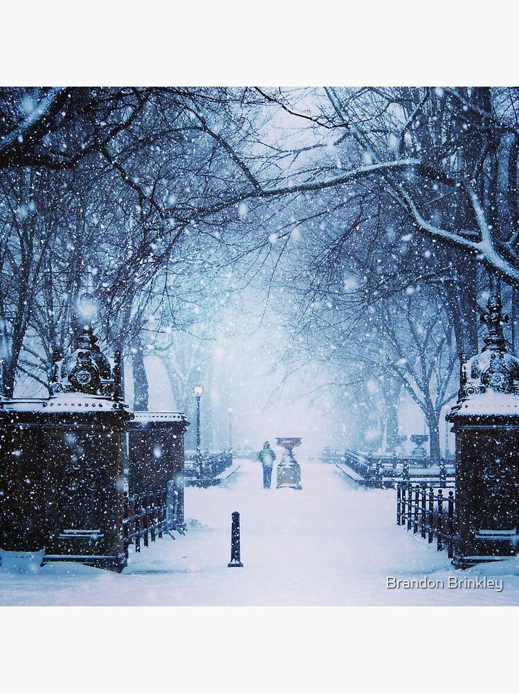 Schöner Schneesturm im Central Park von BrandonBrinkley