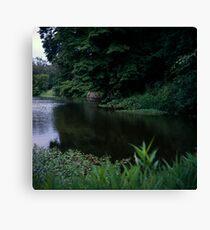 Willow Lake Canvas Print
