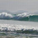 Morning Waves - Belongil  by Louise Linossi Telfer