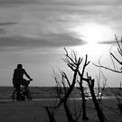 Bicycle on Fort Myers Beach, Florida by Jason Pepe
