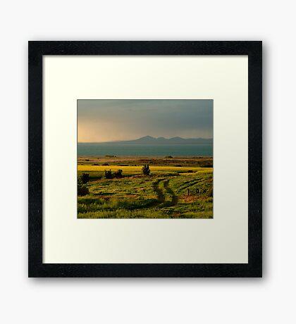 Bellarine Peninsula Framed Print
