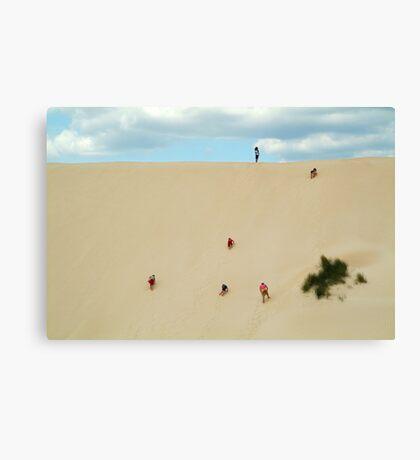 Dune Scramble,S.A. Canvas Print