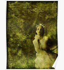 Wood Nymph Poster