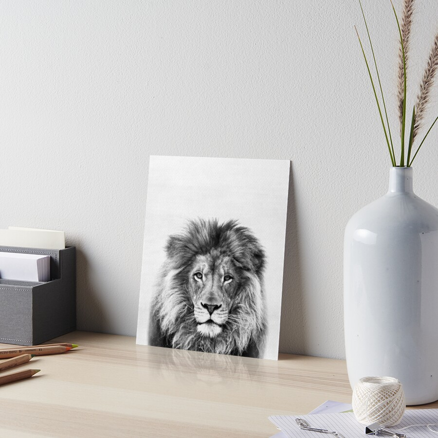 Lion Art Board Print