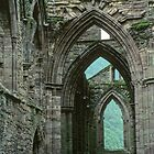 Side aisle Tintern Abbey Wales 19790604 0026 by Fred Mitchell
