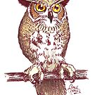 Owl by Charlie Potter