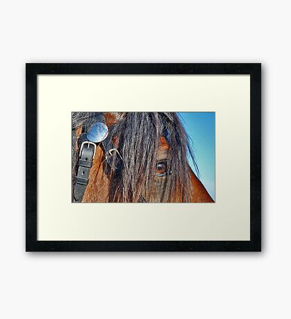 I have a crush on you........ Framed Print
