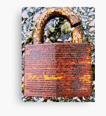 (Un)Secure Canvas Print