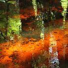 A florida stream by Anthony Goldman