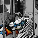 hobby horses by Erica Sprouse