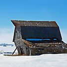 Barn on its Last Leg by Jerry Walter