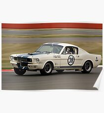 Shelby Mustang 350 GT (N & H Whale) Poster