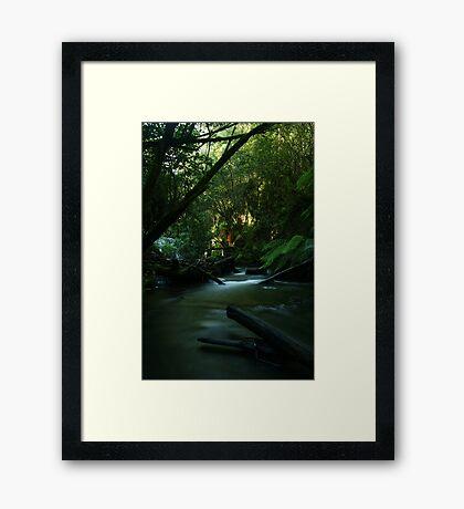 The Stream Between... Framed Print