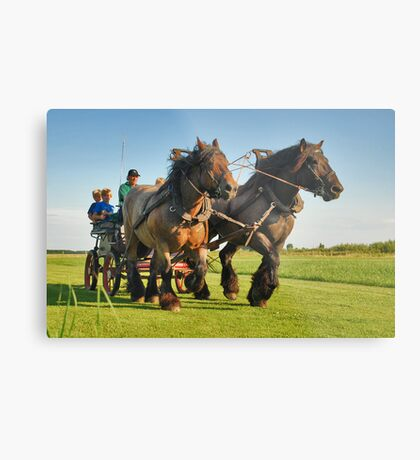 A ride with horses and cart Metal Print