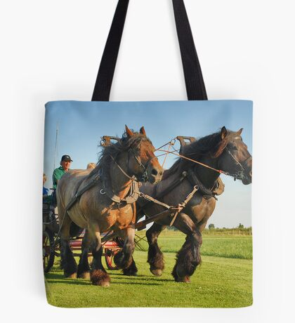 A ride with horses and cart Tote Bag