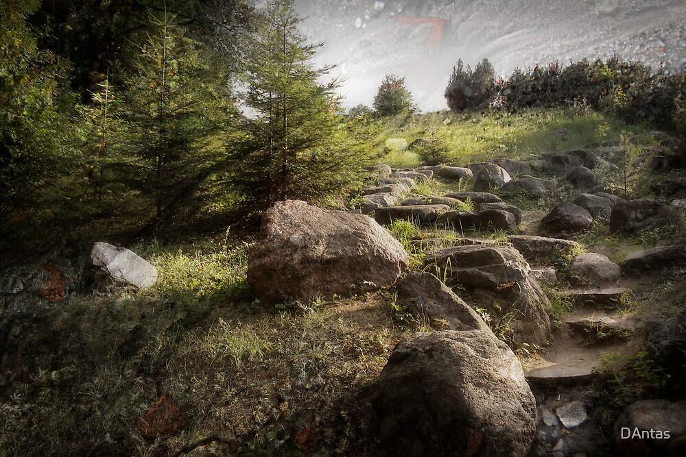 Imprisoned In Rocks by DAntas
