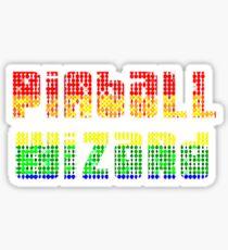 ARCADE - Pinball Wizard! Sticker