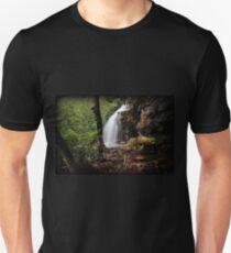 Cave Falls Spring Color T-Shirt