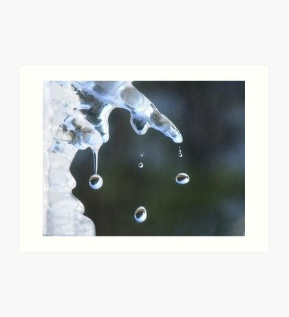 Chilly Drops Art Print