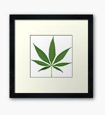 Cannabis leaf vector Framed Print