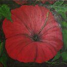 Red Hibiscus by Cynthia Kondrick