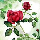 Red Roses by Lubna
