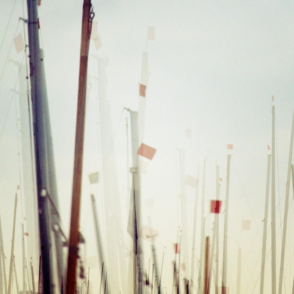 plain sailing by codswollop
