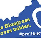 The Bluegrass Loves Babies by bumpers4babies
