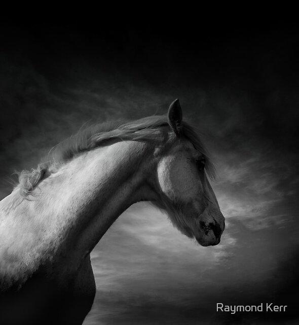 """Spirit"" by Raymond Kerr"