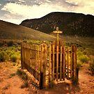 Old graveyard by socalgirl