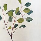 Eucalyptus Sprig by Katy Hood